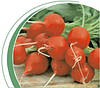 Семена редиса Шахри 500 г. Никерсон-Цваан