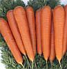 Семена моркови Музико F1 калибров. 100 000сем. Никерсон-Цваан