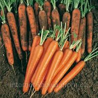 Семена моркови Сопрано F1 100 000сем. Никерсон-Цваан