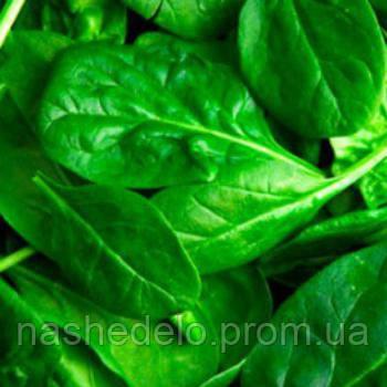 Семена шпината Кинг 1 кг Професійне насіння