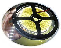 LED лента LEDEX 12V SMD5050/ 60led/m 14,4W  IP65 6500K влагозащищенная Double PCB