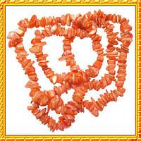 Сколы ракушки - ракушка кораллового цвета с перламутром