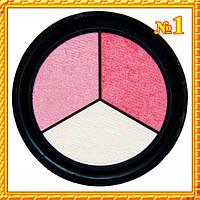 """Тени трехцветные, матовые, белые и розовые """"Qianyu"""" MS 1203 Тон 01"""