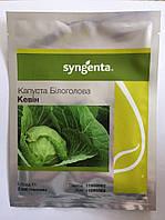 Кевін F1 - капуста білокачана, 2 500 насінин, Syngenta (Сингента) Голландия