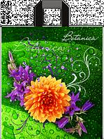 """Пакет с ручками петля  """"Ботаника"""" (38х43+3)80мкм 25шт/упаковка"""