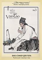 Био-стикер для тела Гуаньцзе чжитун гао №3 (для суставов)