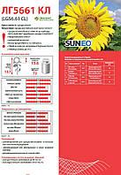 Подсолнечник Limagrain LG 5661 CL (СреднепозднийЕвроЛайтинг под  2015г.