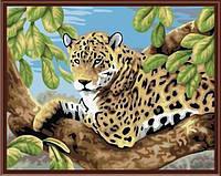 Картина по номерам 40*50 см Леопард 6046