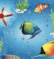 Детский ковролин Рыбки