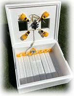 Инкубатор автоматический Теплуша - 63 с влагомером для всех видов яиц