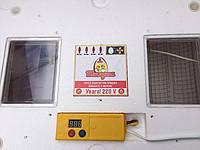 Инкубатор автоматический Теплуша - 63 для всех видов яиц, фото 2