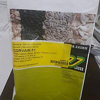 Семена шпината Коваир 100 тыс