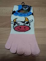 """Женские носки с пальчиками, белые цветом """" Коровка """""""