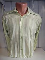 Рубашка мужская DEGER длинный рукав, жатка, без рисунка. 001 купить рубашку