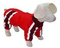 Комбинезон для собак Заря Такса 47х56 см