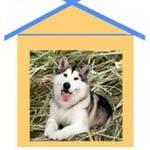 Подстилка для собаки в будку / вольер на зиму