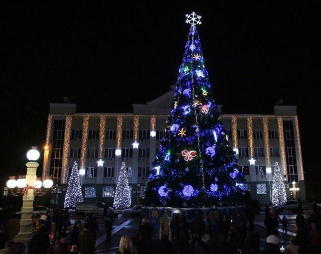 Цена вопроса: в Ирпене установили самую дорогую елку Украины