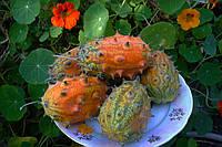 Африканский рогатый огурец (дыня) Семена  , фото 1