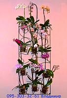 """Подставка для цветов """"Настенная на 12 чаш"""""""