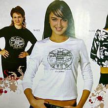 """Белая футболка с длинным рукавом с капюшоном принт """"Кот Давинчи"""" 44-50"""