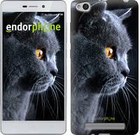 """Чехол на Xiaomi Redmi 3 Красивый кот """"3038c-97"""""""