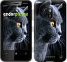 """Чехол на Nokia 230 Красивый кот """"3038u-339"""""""