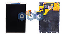 Дисплей Samsung S5830i