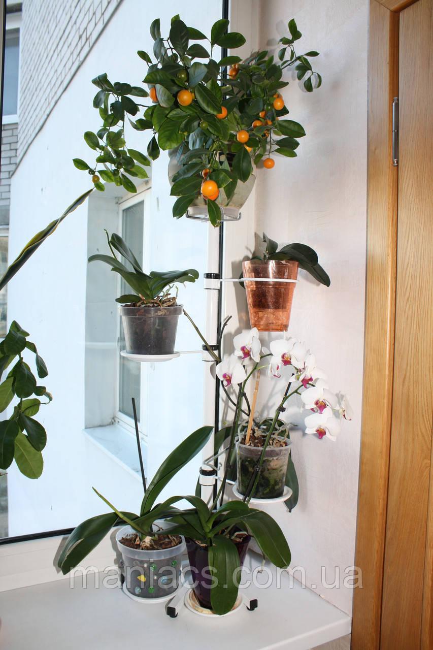 Кет, подставка для цветов