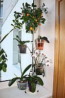 Кет, подставка для цветов, фото 1