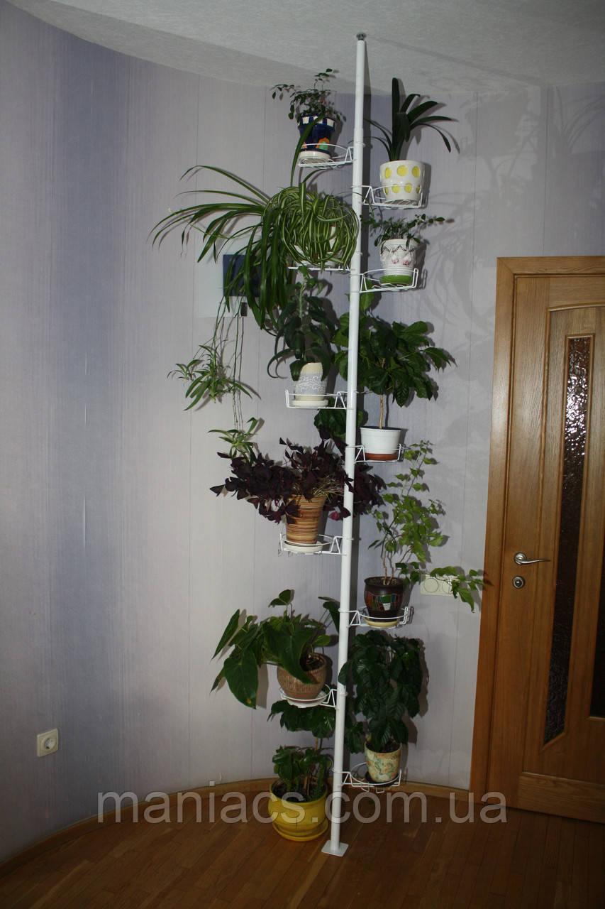 Розпірка підлога-стеля, підставка для квітів