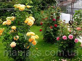 Садовая опора большая для роз, подставка для цветов