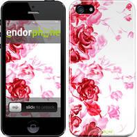 """Чехол на iPhone 5 Нарисованные розы """"724c-18"""""""