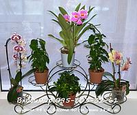 """Подставка для цветов """"Карета малая на 6 чаш"""""""