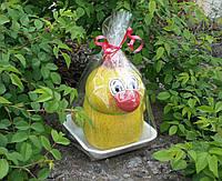 Травянчик Цыпленок, фото 1