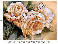 Схема для вышивания бисером Чайные розы