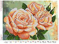 Схема для вышивания бисером Персиковые розы