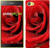 """Чехол на Sony Xperia Z5 Compact E5823 Красная роза """"529u-322"""""""