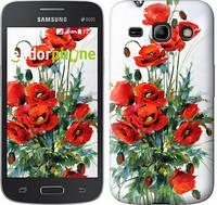 "Чехол на Samsung Galaxy Star Advance G350E Маки ""523u-210"""