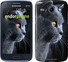 "Чехол на Samsung Galaxy Core i8262 Красивый кот ""3038c-88"""