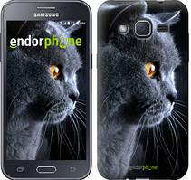 """Чехол на Samsung Galaxy J2 J200H Красивый кот """"3038c-190"""""""