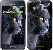 """Чохол на Samsung Galaxy J2 J200H Красивий кіт """"3038c-190"""""""