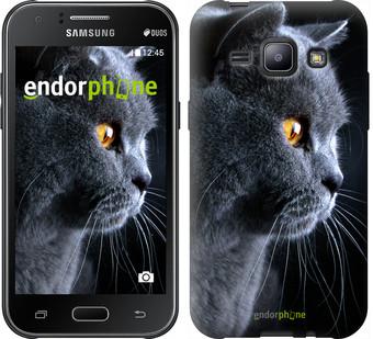 """Чехол на Samsung Galaxy J1 J100H Красивый кот """"3038c-104"""""""
