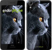 """Чохол на HTC Desire 728G Красивий кіт """"3038u-145"""""""