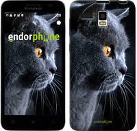 """Чехол на Lenovo A8 Красивый кот """"3038u-233"""""""