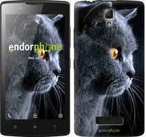 """Чохол на Lenovo A2010 Красивий кіт """"3038c-216"""""""