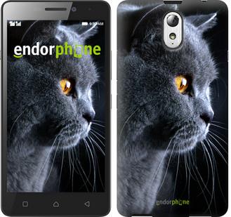 """Чехол на Lenovo Vibe P1m Красивый кот """"3038c-154"""""""
