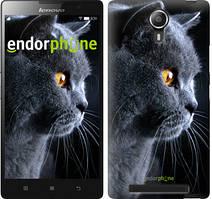 """Чохол на Lenovo Vibe C2 Красивий кіт """"3038c-397"""""""