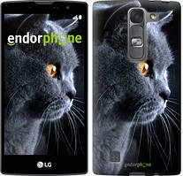 """Чохол на LG G4s H734 Красивий кіт """"3038c-389"""""""