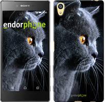"""Чехол на Sony Xperia Z5 Красивый кот """"3038u-274"""""""