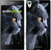 """Чохол на Sony Xperia Z5 Premium Красивий кіт """"3038u-345"""""""